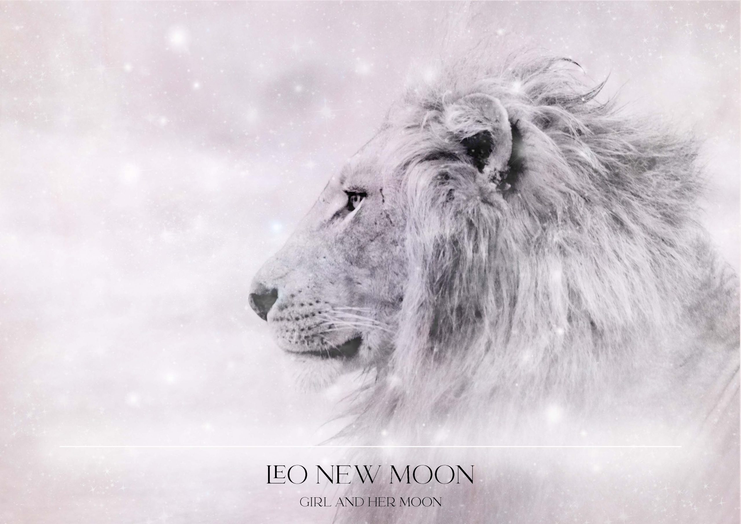 LEO NEW MOON + LIONS GATE PORTAL + RITUAL AUGUST 2021 GIRL AND HER MOON